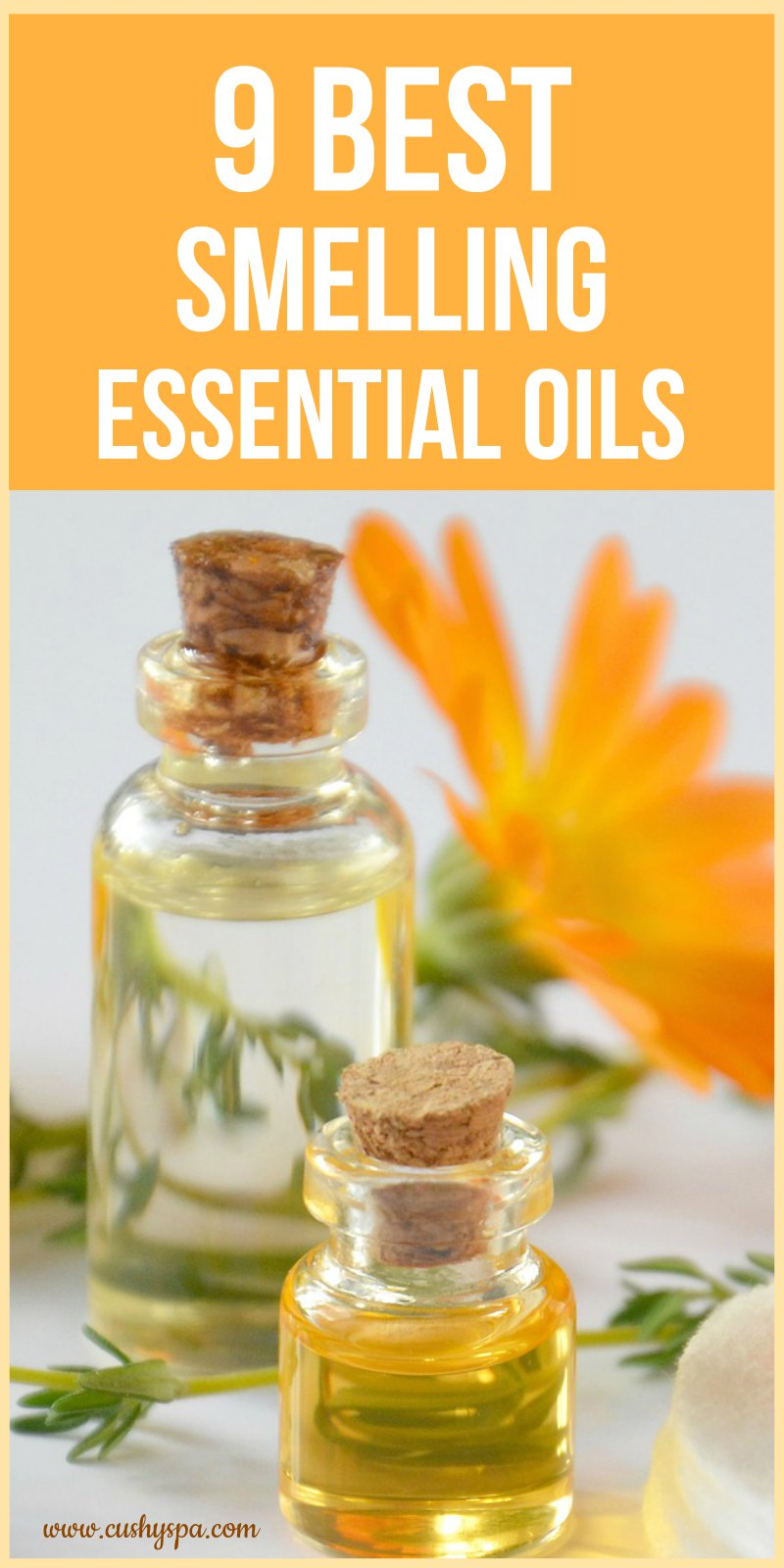 Best smelling essential oils for home design decoration for Best scented oils for home