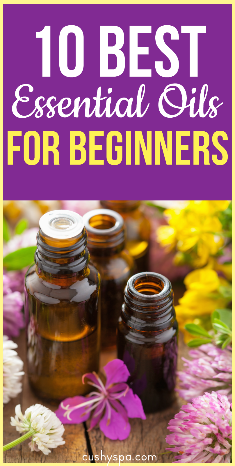 Interested in aromatherapy? However, have no knowledge about it? Here are 10 best essential oils for beginners to start your aromatherapy journey! (aromatherapy for beginners)