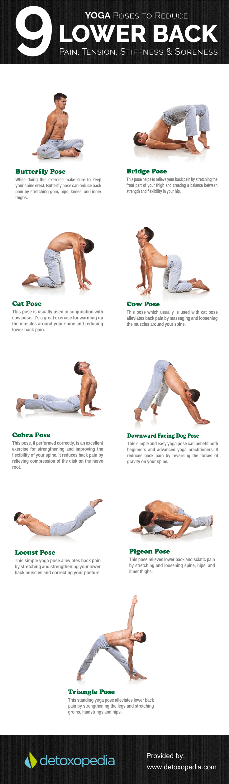 stretches for back infographic