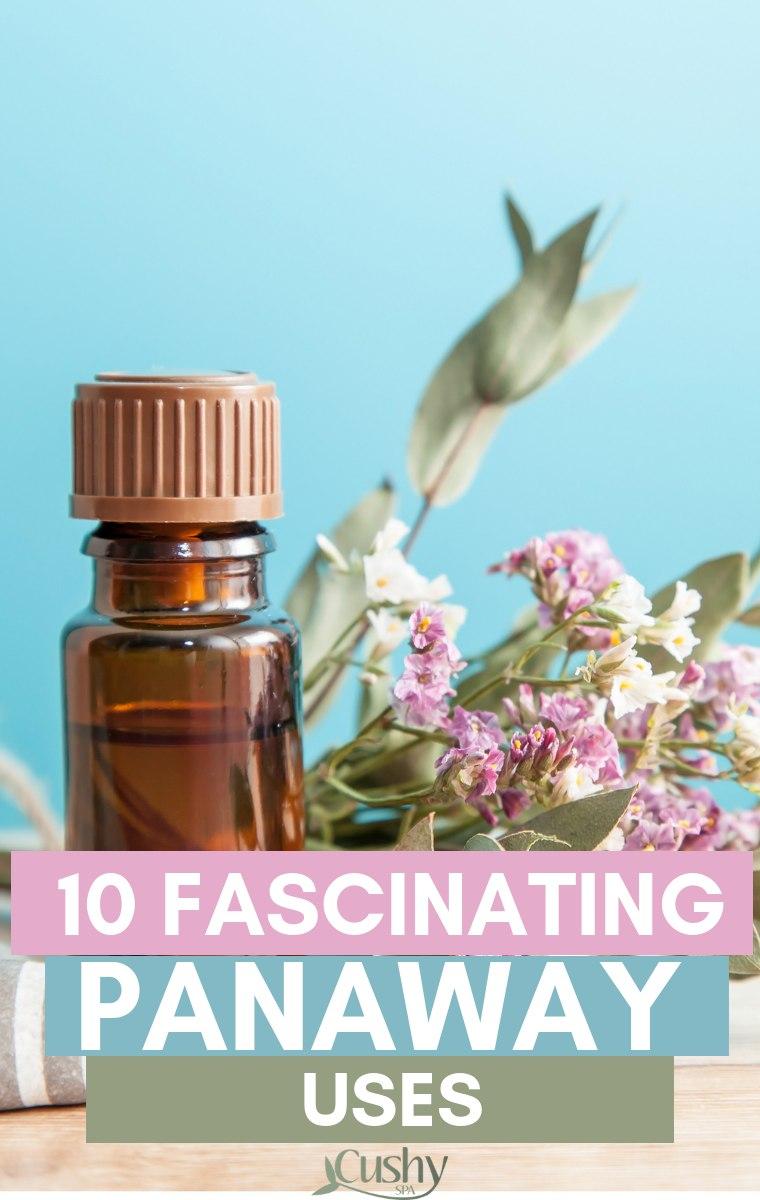 10 fascinating panaway uses