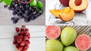 10 High Protein Fruits To Include in Your Diet