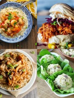 20 High Protein Slow Cooker Recipes